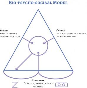 biopsychomodel1
